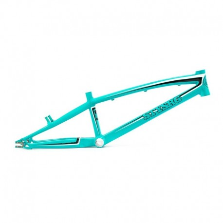 Stay Strong 'For Life'  Frame 2016 Teal