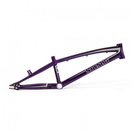 Stay Strong 'For Life'  Frame 2016 Purple